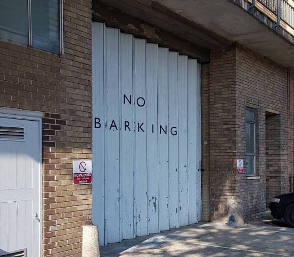 no barking for local seo